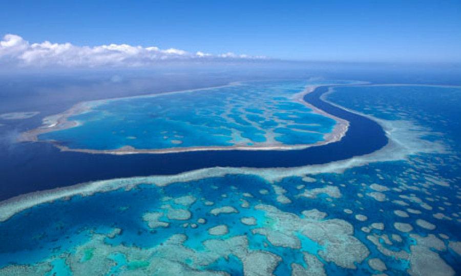 نقاطی از زمین که از فضا قابل رویت است: دیواره بزرگ مرجانی