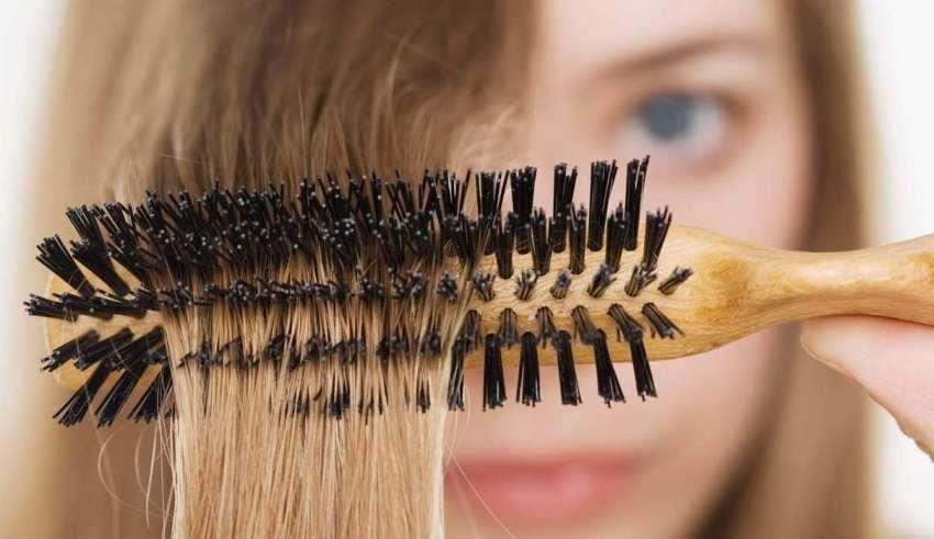 از بین بردن تخم شپش روی موی سر | راهکار درمان قطعی شپش