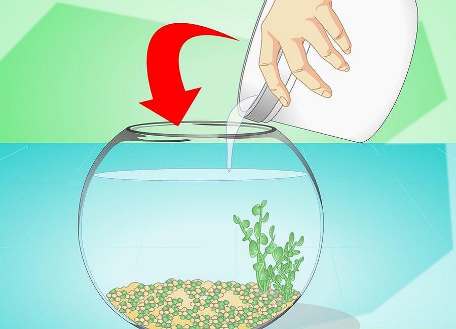 ریختن آب متعادل درون تنگ