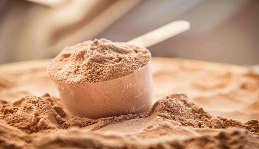 اصول مصرف پودر پروتئین