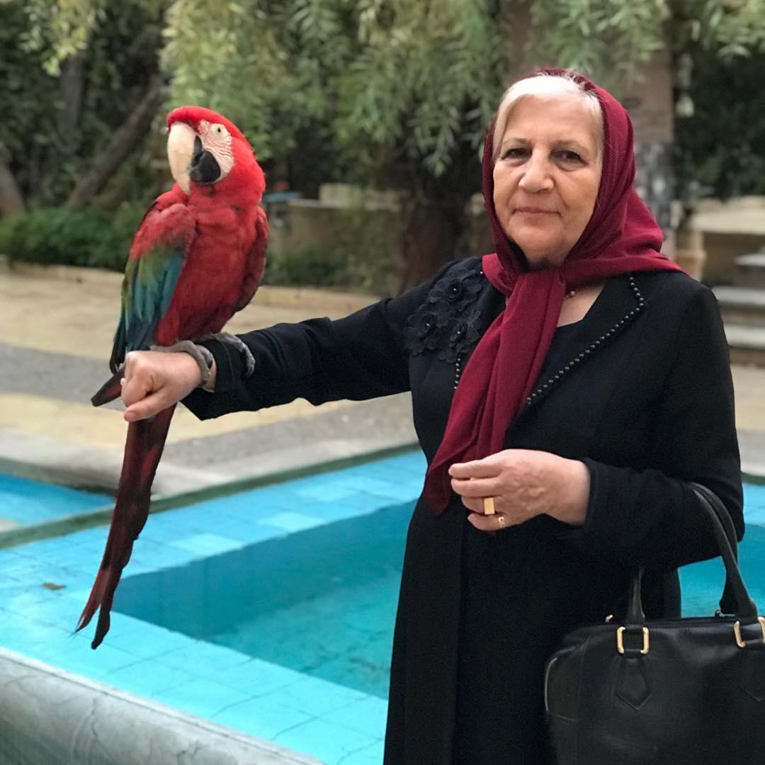 عکس مادر متین ستوده