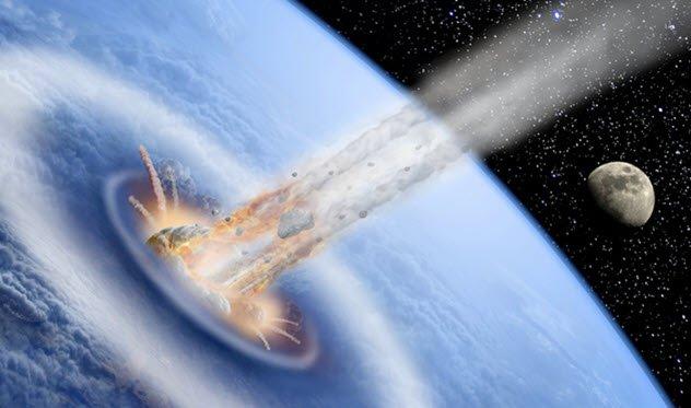 دلایل اثبات اینکه انسان ها از یک فضای دیگر آمده اند: شواهد فسیلی