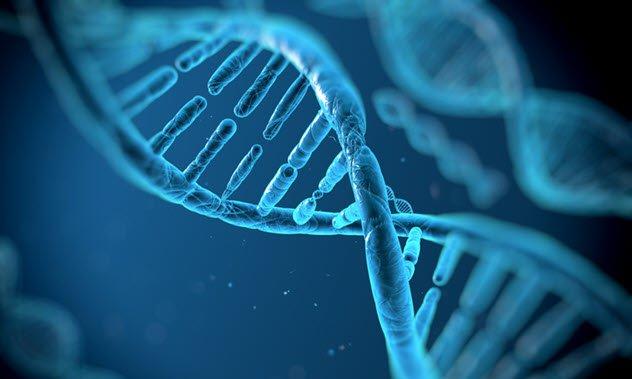 دلایل اثبات اینکه انسان ها از یک فضای دیگر آمده اند: مواد ژنتیکی موجود در فضا
