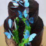 کیک تولد دخترونه بزرگسال شکلاتی دو طبقه