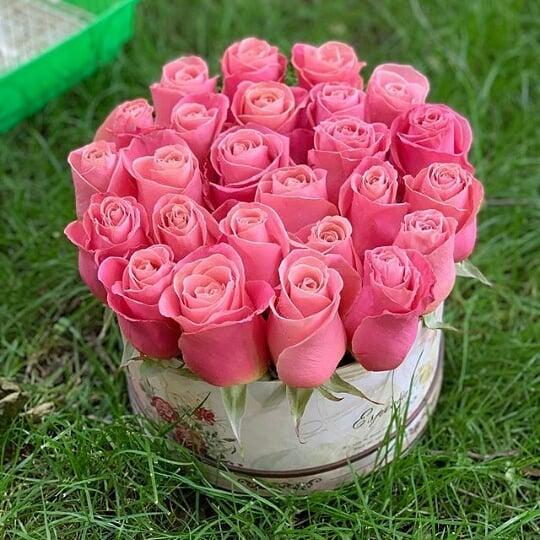 مجموعه فوق العاده عکس پروفایل گل (عاشقانه و رومانتیک)