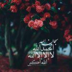 عکس پروفایل دخترانه مذهبی با ذکر سبحان الله