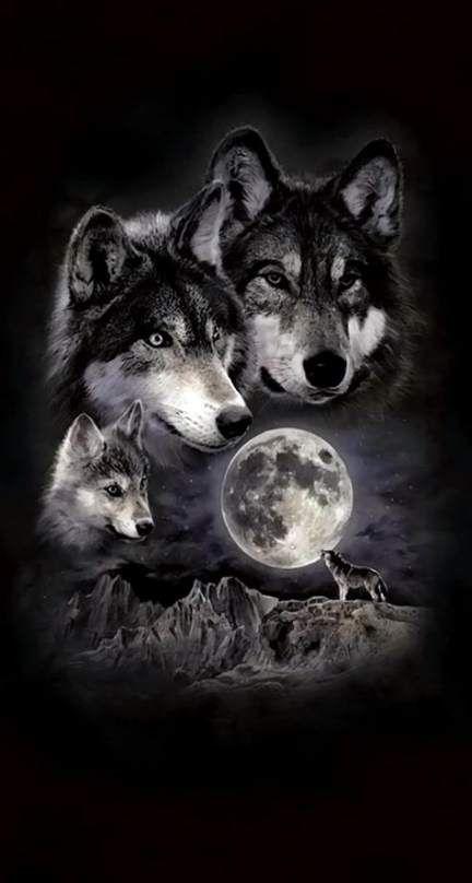 عکس نقاشی گرگ وحشی سیاه سفید