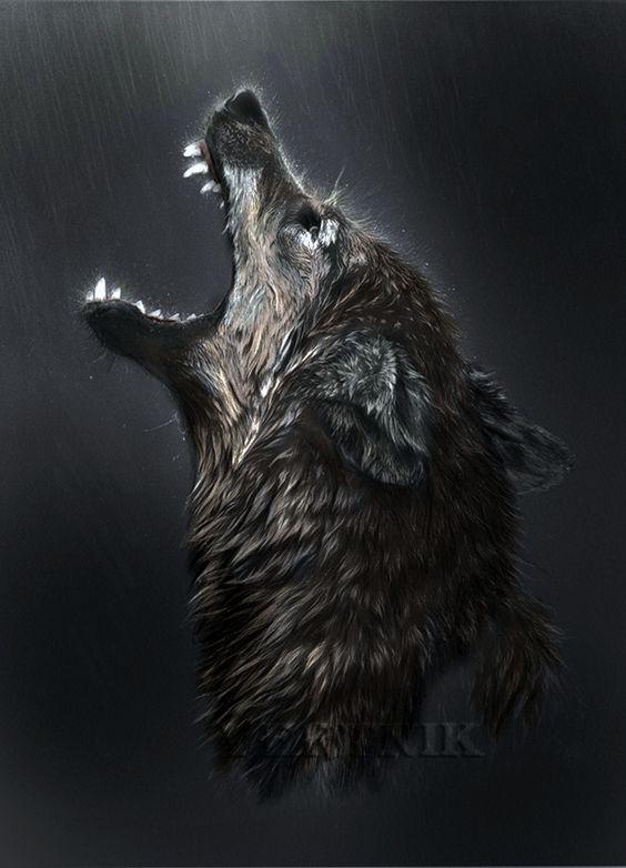 نقاشی زیبای گرگ در حال زوزه با سیاه قلم