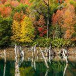 عکس منظره زیبای پاییزی برای بک گراند لپ تاپ