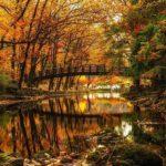 عکس با کیفیت از منظره پاییزی برای صفحه لپ تاب