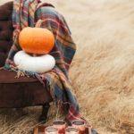 عکس زیبا از منظره پاییزی برای موبایل