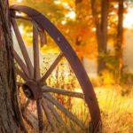 عکس پس زمینه روز پاییزی برای موبایل
