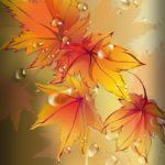 عکس پس زمینه برگ پاییزی برای موبایل