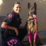 عکس سگ پلیس به همراه پلیس زن