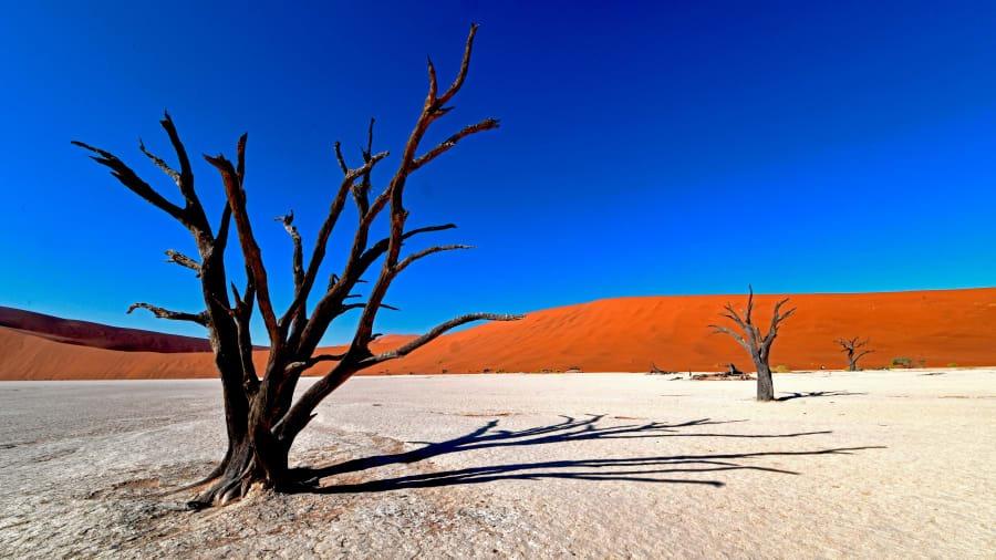 100 تا از جذاب ترین مناطق دینا در سال 2020: نامیبیا