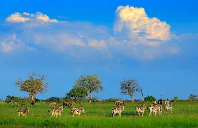 بوتسوانا، آفریقا