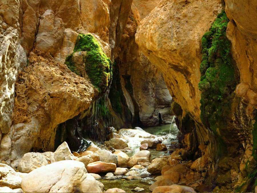 چشمه آبگرم مرتضی علی در طبس