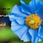 عکس نوشته تبریک عید قربان جدید