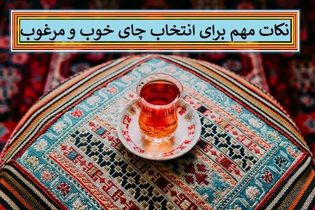 نکات مهم برای تشخیص چای خوب و مرغوب
