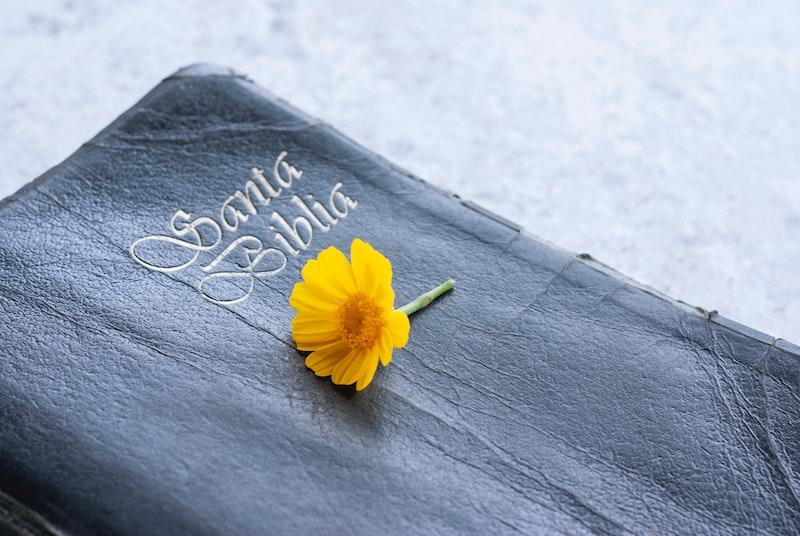 عکس جملات ناب در انجیل مقدس
