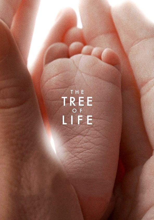 درخت زندگی – The Tree of Life – ۲۰۱۱