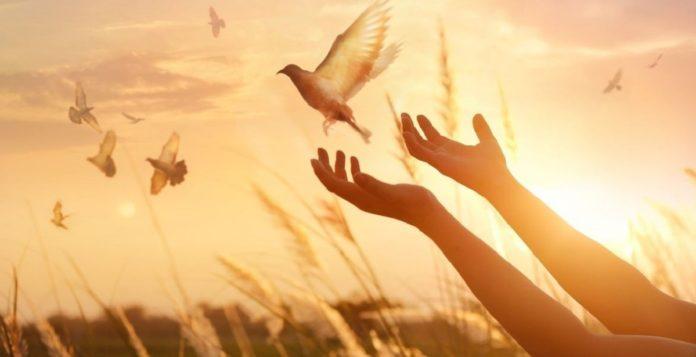 بهترین راه توبه از گناه + مراحل توبه کردن