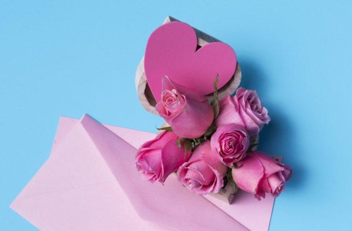 گل رز صورتی نماد چیست (قدردانی یا عشق)