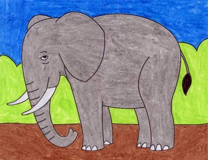 آموزش نقاشی فیل ساده برای کودکان به صورت مرحله به مرحله