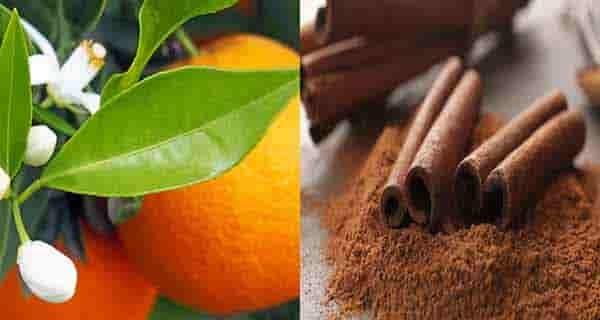 طرز تهیه دمنوش بهار نارنج: دارچین