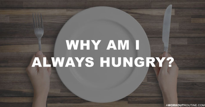 چرا همش احساس گرسنگی دارم؟