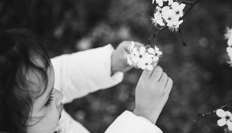 عکس گل های سیاه سفید برای پروفایل و استوری